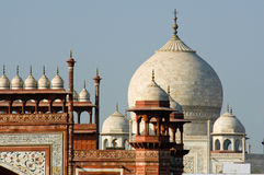 Roof Top of Taj Mahal Royalty Free Stock Image