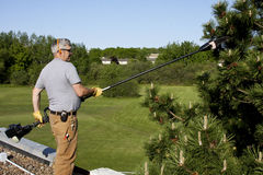 Roof top tree trimming Stock Images