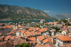 Roof tops of the old town Kotor Stock Images