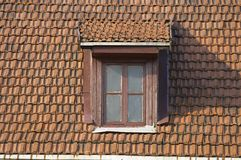 Roof, window, tile Royalty Free Stock Photos