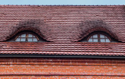 Roof windows are like eyes Stock Images