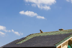 Roofer in work Royalty Free Stock Photos