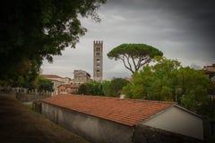 Roofes vermelhos típicos com a torre de sino do pinho de pedra e da igreja de San Frediano no fundo Efeito da vinheta Lucca Italy Imagem de Stock Royalty Free