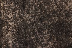 Roofing felt black texture. Roofing felt old  black texture with spot Stock Photos