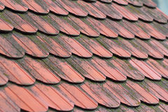 Roofing slate. Coseup of a red roofing slate Royalty Free Stock Photos