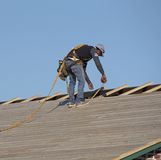 A roofing worker with tape measure. Florida USA - October 2016 - Roofer wearing a safety harness measuring wooden slats using a tape measure Stock Photos