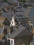 Roofs of Amboise Royalty Free Stock Photo