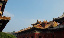 Roofs of Chinese palace or temple - Forbidden City, Beijing China. Orange, sloping roofs of traditional temples and palaces in Beijing, China - the Forbidden royalty free stock image