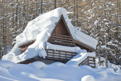 Roofs covered by snow Stock Image