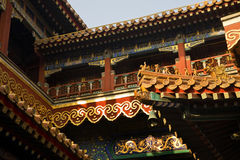 Roofs Figures Yonghe Gong Buddhist Temple Beijing Royalty Free Stock Image