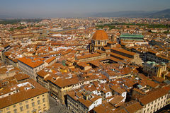 Roofs of Florence. Red Roofs of Florence seen in summer 2012 Royalty Free Stock Photography