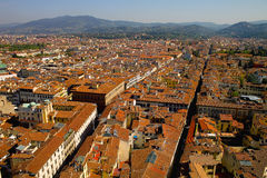 Roofs of Florence. Red Roofs of Florence seen in summer 2012 Stock Photo