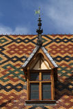 Roofs of Hotel Dieu Stock Images