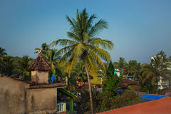 Roofs of houses and palm trees Royalty Free Stock Image
