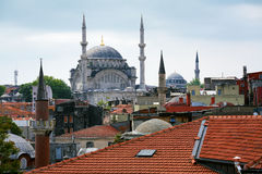 Roofs and Mosques of Istanbul Stock Photography