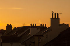 Roofs near the sea, sunset. North Wales coast in Rhyl, England, roofs in the sunset Royalty Free Stock Photography