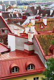 Roofs of the old city, Tallinn, Estonia Royalty Free Stock Image