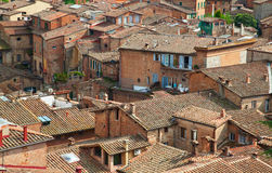 Roofs of old Siena Royalty Free Stock Image