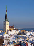 Roofs of old Tallinn. Fresh snow on roofs of old Tallinn Royalty Free Stock Images