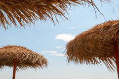 Roofs of palm leaves Royalty Free Stock Photo