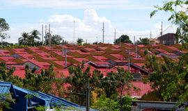Roofs in Red Stock Images