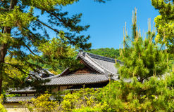 Roofs of a shinto shrine in Nara. Japan stock photography