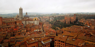 Roofs of Siena from bell tower Torre del Mangia. Stock Photo