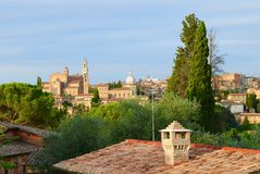 Roofs of Siena Stock Photography