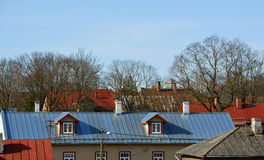 Roofs and trees Royalty Free Stock Images