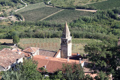 Roofs and vineyards royalty free stock image