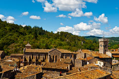 Roofs of Viviers stock photos