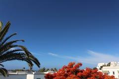 rooftop Photo libre de droits