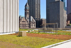 Rooftop garden Royalty Free Stock Photography