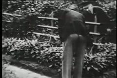 Rooftop garden, New York City, 1930s stock video