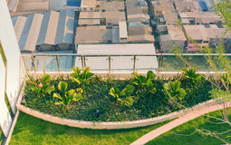 Rooftop ornamental garden. Top view of rooftop ornamental garden in urban setting Stock Photography