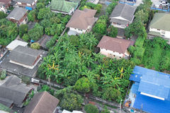 Rooftop photo of a small neighborhood in the south-west corner of Bangkok. You can see palm trees mixed with housing in a nice rel Stock Photography