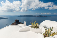Rooftop plants on house in Santorini Greece Royalty Free Stock Images