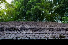 Rooftop, Roof Tile, Tile, Wood - Material, Built Structure stock photo