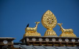 Rooftop statues of two golden deer and Dharma wheel in Tibetan Temple. The Rooftop statues of two golden deer and Dharma wheel in Tibetan Temple stock image