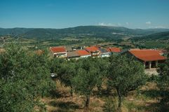 Rooftop of white houses among olive tree field royalty free stock photos