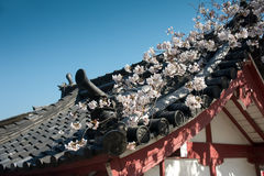 Rooftops of Japanese castle in Kyoto. MS: The rooflines  at the Silver Pagoda castle in Kyoto Japan.  Very typical of Japanese architecture of the period Stock Photo