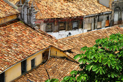 Rooftops in Salvador de Bahia Royalty Free Stock Images