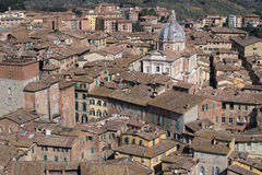 Rooftops of Siena Royalty Free Stock Image