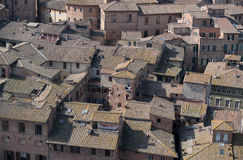 Rooftops of Siena Stock Images
