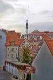 Rooftops of Tallinn Royalty Free Stock Photos