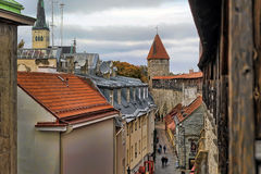 Rooftops of Tallinn Royalty Free Stock Photo