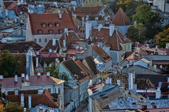 Rooftops of Tallinn Royalty Free Stock Photos