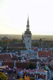 Rooftops of Tallinn Royalty Free Stock Photography