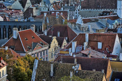 Rooftops of Tallinn Royalty Free Stock Image