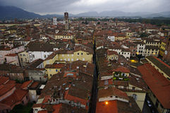 Rooftops View of Lucca, Tuscany, Italy Stock Photography